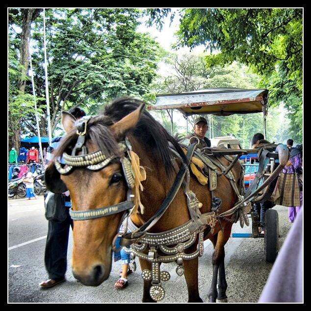 Bandung Trip 2008