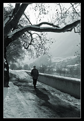 """Walk this way..."" (rjptn) Tags: trees snow river foto walker trento pistaciclabile bikeway adige canoneos40d"