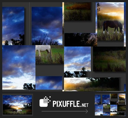 PIXUFFLE: 4691259714884382731.jpg by Pixuffle's Public Gallery.