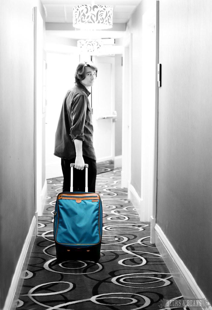 Hartmann Luggage 1