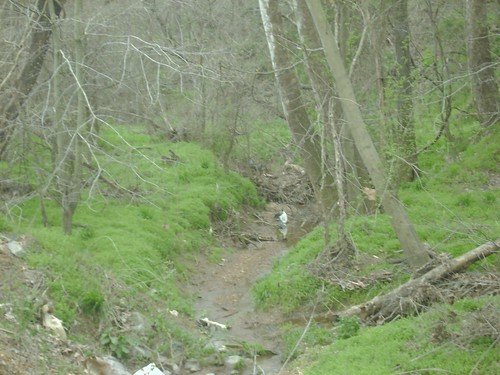 creekcannon2