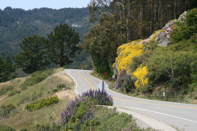 Road to Mt. Tamalpais