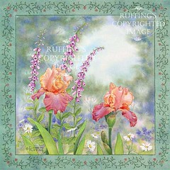 """""""Iris and Foxgloves"""" Watercolor Floral by Elizabeth Ruffing"""