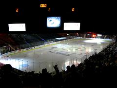Second Goal: Fan Reaction Inside Mellon Arena (macwagen) Tags: game cup sports hockey nhl penguins fan video goal pittsburgh 5 arena final stanley todd adamhall mellon reaction hryckowian fktigerwoods