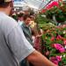 Klingers farm market