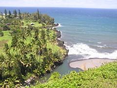 P1010476 (RaySorin) Tags: hawaii april2005