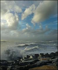 SALT HARVEST (ESOX LUCIUS) Tags: ocean sea storm holland bravo waves noordzee taco northsea maasvlakte blokkendam visiongroup
