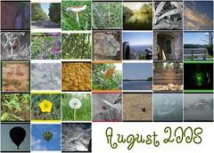 August 2008 Mosaic