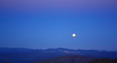 Full-moon low in the west : over Andacollo, 1 of 3 (fotoeins) Tags: chile sky moon mountain sunrise canon eos kitlens fullmoon moonset xsi andacollo pachon eos450d henrylee 450d canonefs1855mmf3556is fotoeins henrylflee fotoeinscom