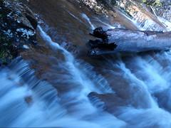 Rushing down  . . . (Stellina.m ♪♪ (...illness)) Tags: nature water flow waterfall stream slice naturesfinest mtfieldnationalpark artisticexpression bej australiannationalpark impressedbeauty flickrlovers goldenheartaward