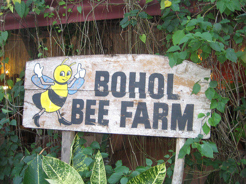 Bohol Bee Farm FTW!