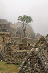 Peru_Machu_Picchu_Mist_Oct_08-21