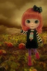 The Mystery Pumpkin