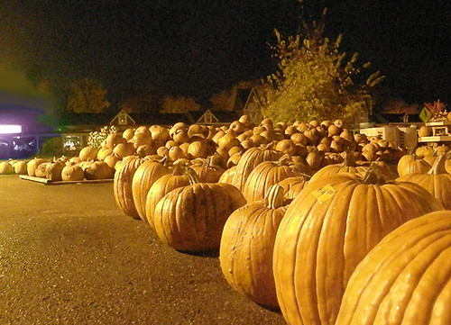 Wayzata pumpkins seek purple