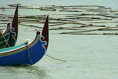 Lobuk (Farl) Tags: travel seaweed colors indonesia boats java boat bow raft rafts madura bluto raket eastjava carrageenan kappaphycus alvarezii lobuk jawatimur mariculture kappaphycusalvarezii