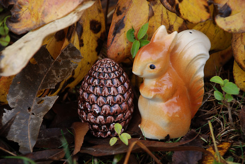 Squirrel & Pinecone