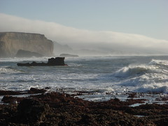 MartinsBeach_2007-038 (Martins Beach, California, United States) Photo