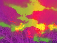 Sun Shining Through Dusk (Rebecca L. Daily) Tags: pink blue trees light sunset red sky orange sun silly color green art nature strange yellow clouds dinner outside outdoors evening weird early cool colorful neon afternoon shine purple absurd dusk maroon branches digitalart