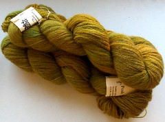 posh yarn sophia fern