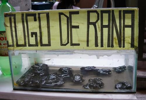 Jugo de rana / Frog Juice