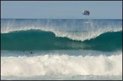 (Pink Hibiscus) Tags: hawaii nikon surf oahu action parasail watersports fullframe fx 2009 allrightsreserved bigwaves copyrighted kakaako pinkhibiscus d700