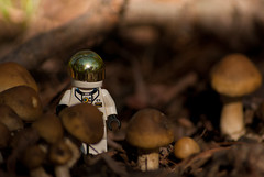 Mysterious Planet (Tracie Ball) Tags: ohio portrait usa moon man macro landscape mushrooms lego space explorer alien astronaut planet minifigs worthington