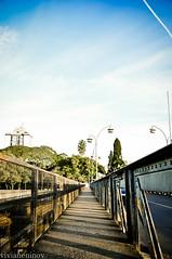 história (Viviane Ninov) Tags: ponte são história leopoldo