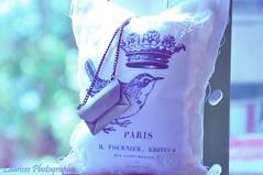 Ai, Paris (Laarices Fofagrafia) Tags: paris photography pássaro colar almofada alicedisse laarices