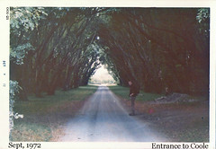 Entrance to Coole (ColleenM) Tags: old trees ireland galway lady all arch group augusta gregory 1972 001 kodacolor coole countygalway kodakpony135 postcardireland csmlabel