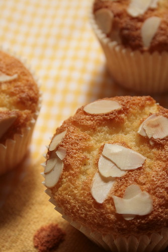 white chocolate&coconut muffin