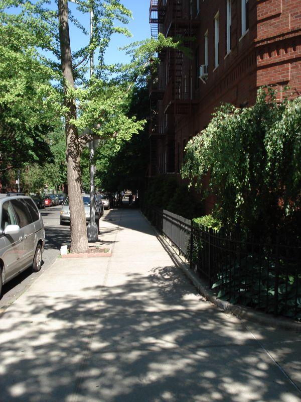 NYC2008 084