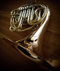 French Horn (lutonian) Tags: wood music stilllife abstract mike work reflections iso100 pipes grain handheld reflective musicalinstrument filters brass valves frenchhorn boardroom f28 compactcamera 160sec g9 canonphotography 74mm desktable lightroom2