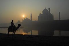 Sunrise at the Taj (Dave Schreier) Tags: sun india reflection beautiful sunrise taj mahal agra camel soe aplusphoto