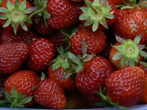Macro shot of strawberries