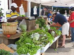 Brookline Farmer's Market