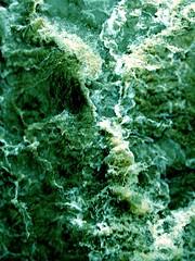 Creciente (Sr. Amortuorio) Tags: storm verde water ro river puente agua espuma fuerza creciente correntada