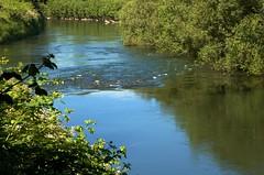 Green River (djwudi) Tags: summer usa river season washington hardware kent nikon day time d70s objects location greenriver tamron tamron2875f28 photospecs 280750mmf28 oldfishingholepark