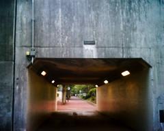 【写真】VQ1005で撮影した朝の風景(トンネル)
