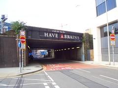 Brains_6447