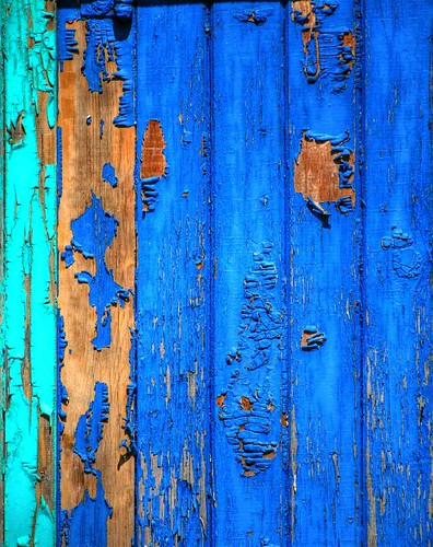 Weathered Blue Door / salvi08