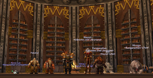 Libraries and Librarians Guild Member In the Ironforge Library