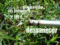 Aviso Publicitario (:Cerquita:) Tags: macro publicidad ♥ afiches cigarrillo