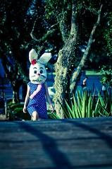 Bunny Book (Andr Cherri) Tags: rabbit expo konijn conejo andre ibirapuera coelho  lapin vestido kaninchen bolinha coniglio  cherri portifolio  coelha   andrcherri