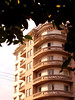Santa Maria - RS - Brasil (Laísa Roberta Trojaike) Tags: trees tree leave folhas window stock janela prédio build folha árvores andares prediosantigos embananar