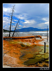 Mammoth Hot Springs Yellowstone (Bonell Photography (dasbull)) Tags: blue red vacation orange mountains hot tree green broken water clouds dead montana peace branches steam panasonic mammoth springs minerals yellowstone layers fz50 dasbull ronbonell