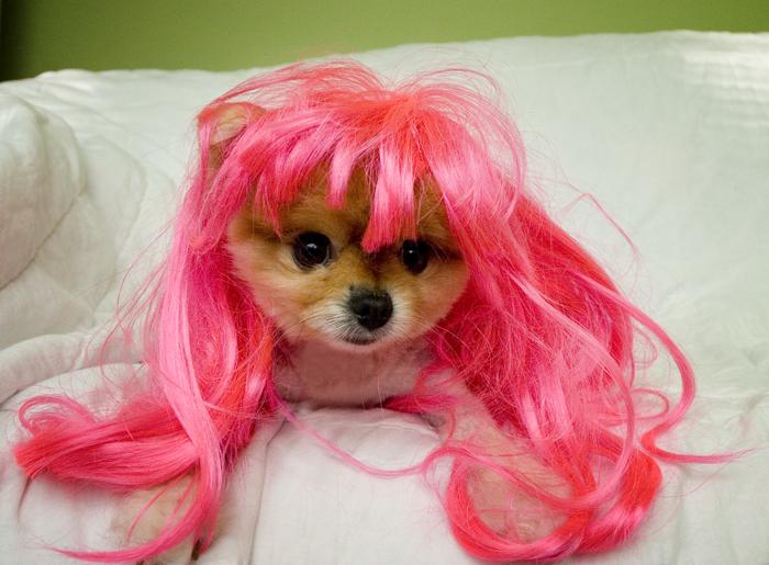 pink sophie!