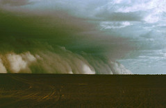 Sand storm in Niger - Africa. (cookiesound) Tags: africa trip travel vacation holiday storm travelling nature niger canon photography sand reisen flora fotografie desert urlaub natur sandstorm afrika thunderstorm impressions duststorm landschaft canoneos reise desertstorm travelphotography traveldiary travelphotos eindrcke reisefotografie travelshots reisefotos reisetagebuch desertsand reisebericht travellifestyle cookiesound desertsandstorm nisamaier ulrikemaier sandstormafrica sandstormniger hugesandstorm bigsandstorm desertstormafrica desertstormniger