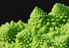 Cabbages from the outer space (xNstAbLe) Tags: black verde green texture coral closeup weird space surreal fibonacci definition mysterious fractal outer veggie reef edible nero romanesco cabbages naturesfinest cavoli ediblefractal