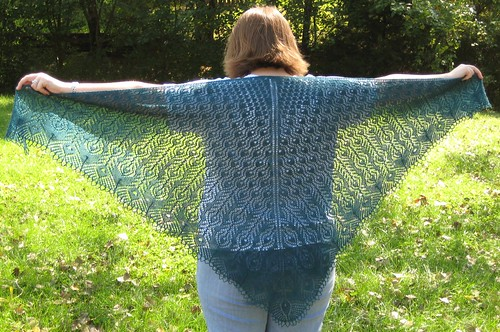 PF shawl modeled