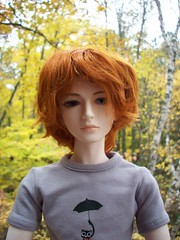 Rainy October (betsyowl) Tags: cabin october dolls bjd